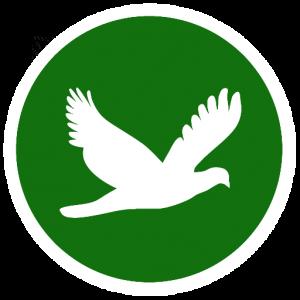 bird-jar